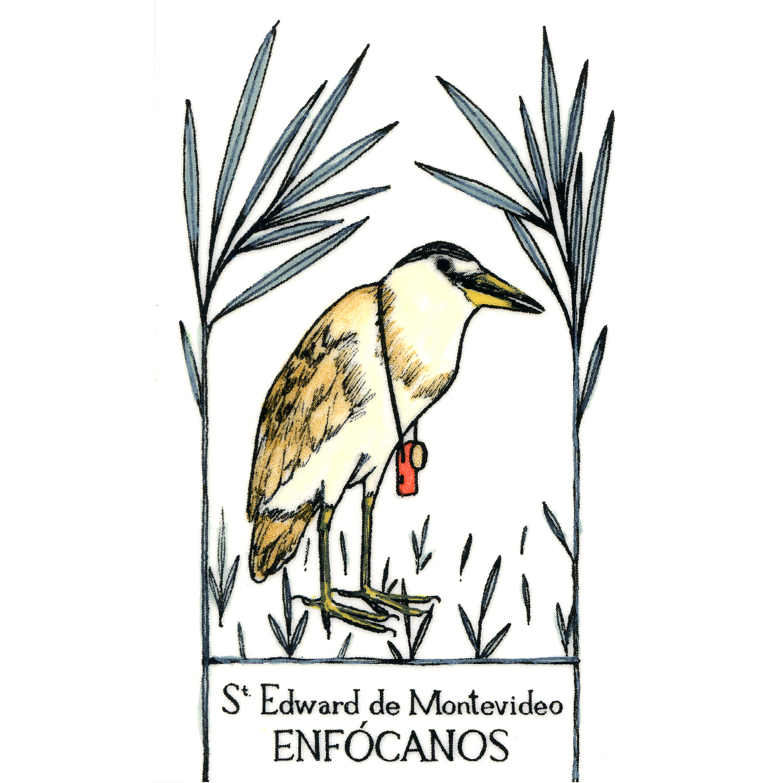 Elena Odriozola ilustración
