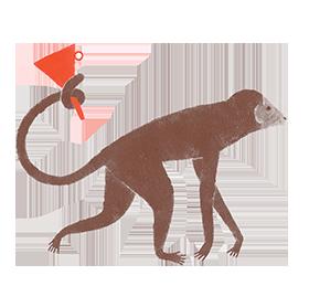 Logotipo Modernas el embudo